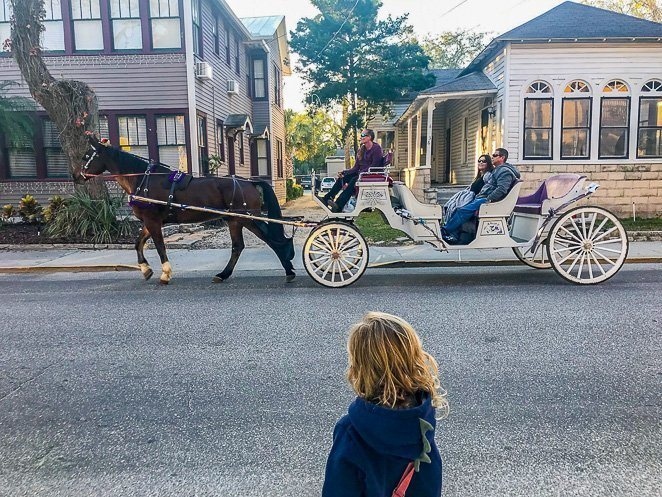 Horse Drawn Carriage Ride