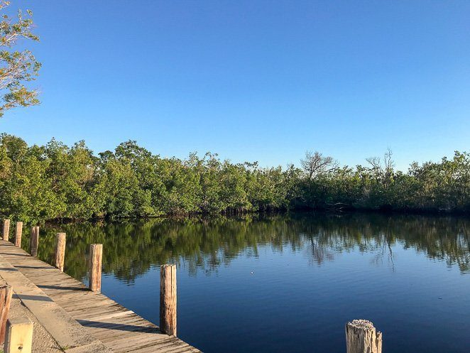 Collier Seminol State Park - Naples with Kids