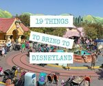 19 Things To Bring To Disneyland
