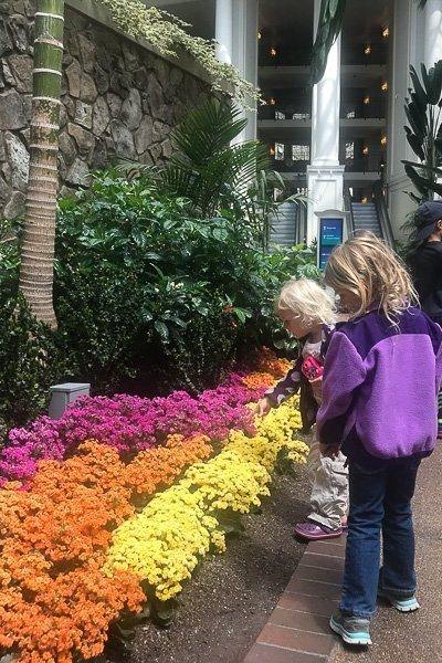 Gaylord Opryland Resort - where to stay in Nashville with kids
