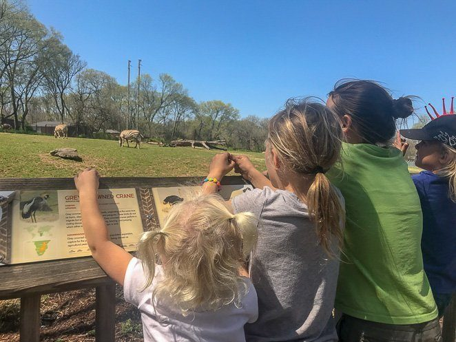 Nashville Zoo - Top things to do in Nashville with Kids
