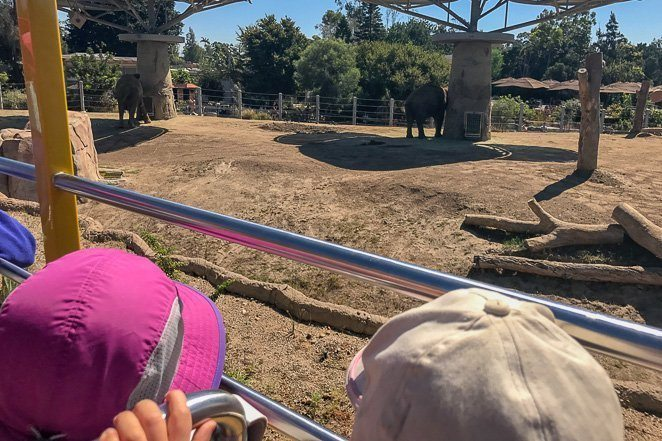 Double Decker Bus Tour of San Diego Zoo - Family Bucket List trips