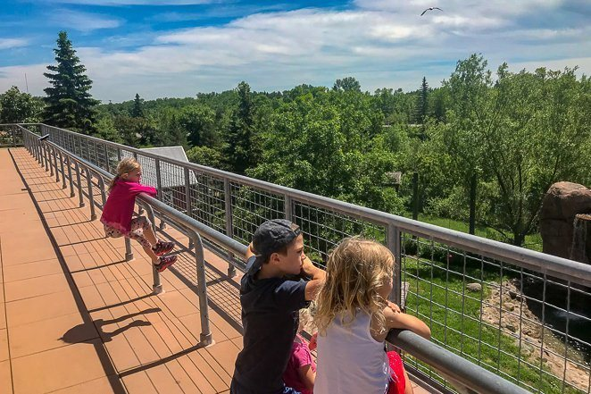 Duluth Attractions - Lake Superior Zoo