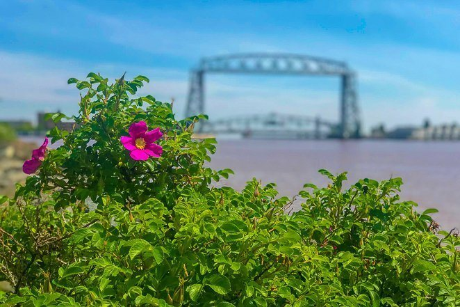 Things to do in Duluth with Kids