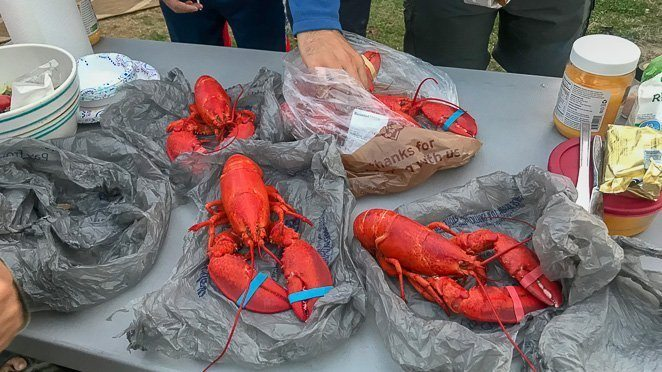 What to do in Bar Harbor Maine - Eat Lobster