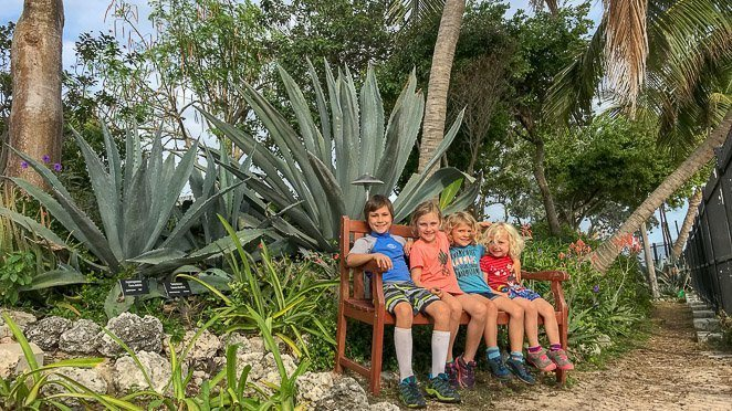 Best things to do in Key West with kids - Key West Garden Club
