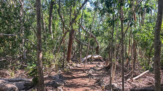 What to do in Key Largo - Go hiking at John Pennekamp State Park FL