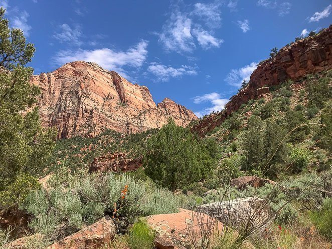 Best Hikes In Zion