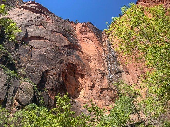 The Riverside Walk Trail in Zion