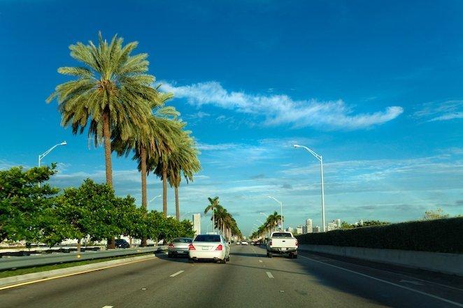 Florida Road Trip Ideas