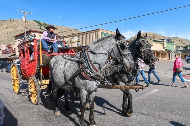Horse Drawn Carriage Ride - Jackson WY