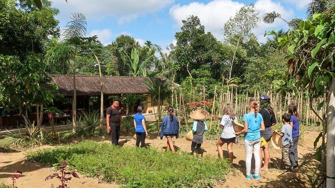 Bali Farm