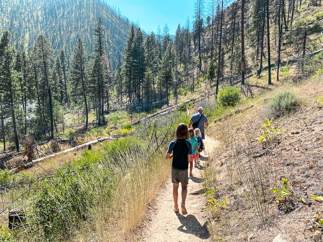 Hike down to Pine Flats Hot Springs