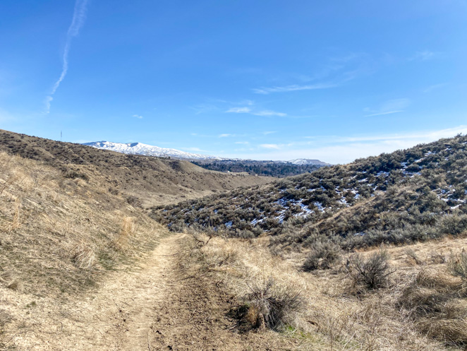 Harrison Hollows Hike Boise in Spring