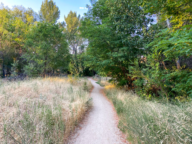 Owl's Roost Trail Boise
