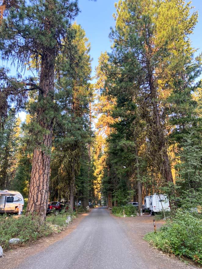 Camping Ponderosa State Park